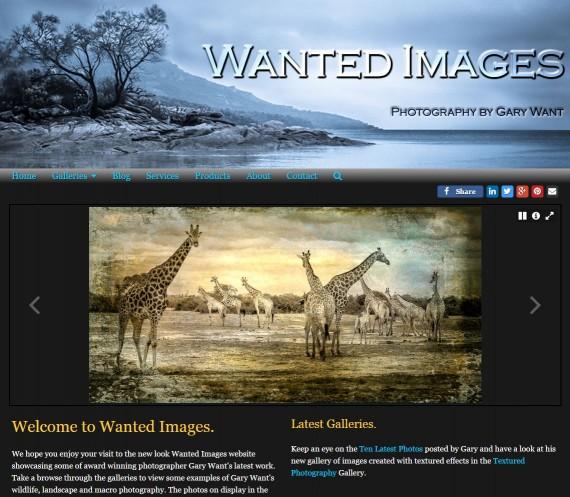 WantedImages Website
